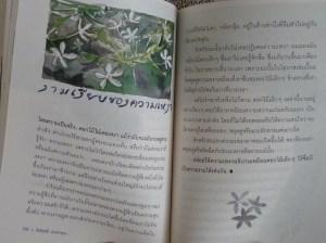 book1_inside
